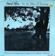 "David Allyn Vinyl 12"" (Used)"