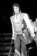 Elvis PresleyFine Art Print