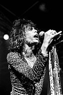 Steven TylerFine Art Print