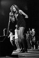 Tina TurnerFine Art Print