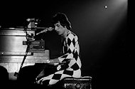 Freddie MercuryFine Art Print