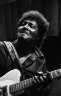 Albert Collins Fine Art Print