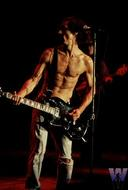 Iggy Pop BG Archives Print