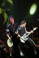 Billie Joe ArmstrongFine Art Print