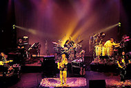 Widespread Panic BG Archives Print