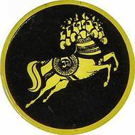 Ravi ShankarVintage Pin