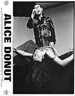 Alice DonutPromo Print