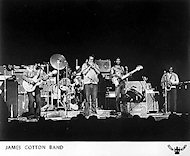 James Cotton Blues Band Promo Print