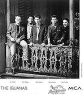 The IguanasPromo Print