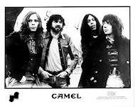 Camel Promo Print