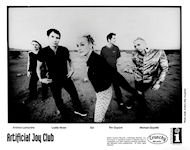 Artificial Joy Club Promo Print