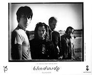 BlindsidePromo Print