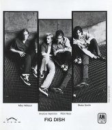 Fig Dish Promo Print