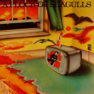"A Flock of Seagulls Vinyl 12"" (Used)"