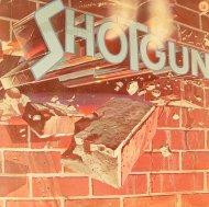 "Shotgun Vinyl 12"" (Used)"