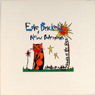 Edie Brickell & New Bohemians Album Flat