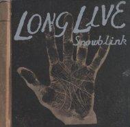 Snowblink CD