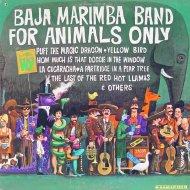 "Baja Marimba Band Vinyl 12"" (Used)"