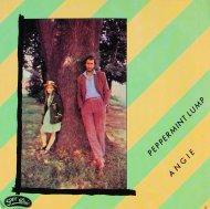 """Angie Vinyl 7"""" (Used)"""