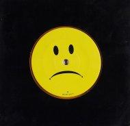 "Everclear Vinyl 7"" (Used)"