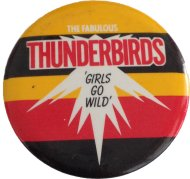 The Fabulous Thunderbirds Pin