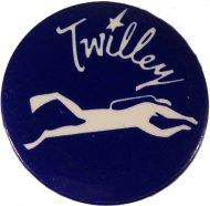 Dwight Twilley Pin