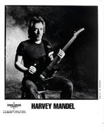 Harvey Mandel Promo Print
