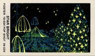 Star Bright Sticker