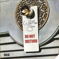 """Wildman Steve Vinyl 12"""" (Used)"""