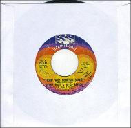 "Pickin' Wild Mountain Berries / Pure Love And Pleasure Vinyl 7"" (Used)"