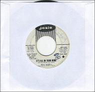"""Soul Angels Vinyl 7"""" (Used)"""