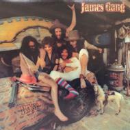 Jesse Gang Vinyl (Used)