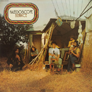 Kaleidoscope Vinyl