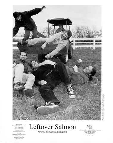 Leftover SalmonPromo Print