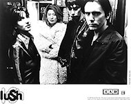 Lush Promo Print