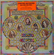 Lynyrd Skynyrd Vinyl (New)