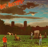 """Mr. Mister Vinyl 12"""" (Used)"""