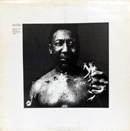 Muddy Waters Vinyl (Used)