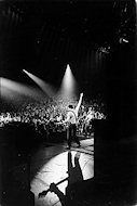 Pete Townshend Fine Art Print