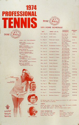 Professional Tennis Poster