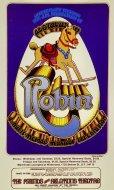 Robin Handbill