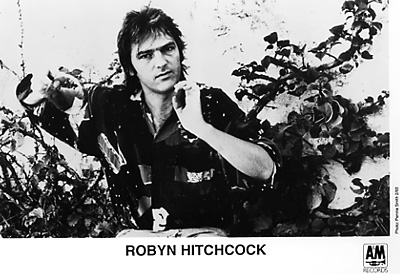 Robyn HitchcockPromo Print