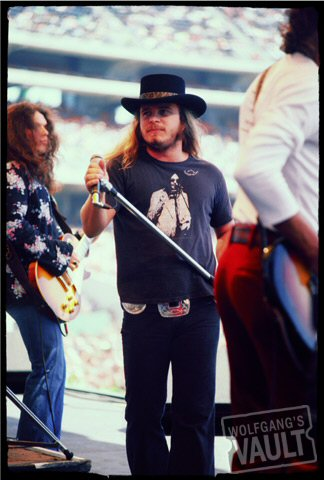 Ronnie Van ZantFine Art Print