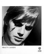 Shaun Cassidy Promo Print