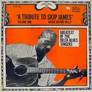 """Skip James Vinyl 12"""" (New)"""
