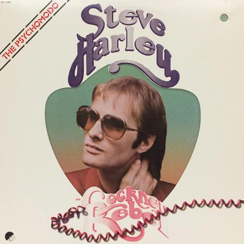 Steve Hartley Vinyl (Used)