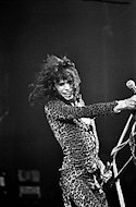 Steven Tyler Fine Art Print