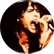 Steven Tyler Vintage Pin
