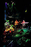 String Cheese Incident BG Archives Print
