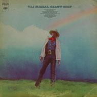 Taj Mahal Vinyl (Used)